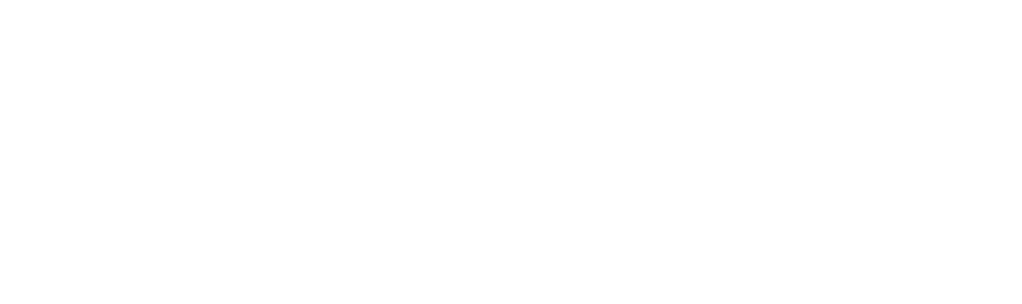 Chief Healthcare Executive